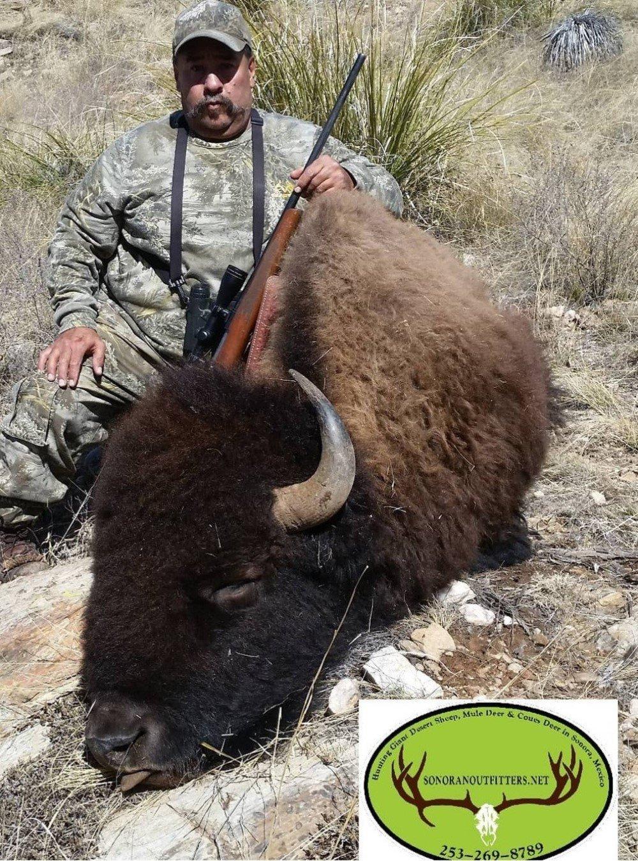 Buffalo david hunting mexico