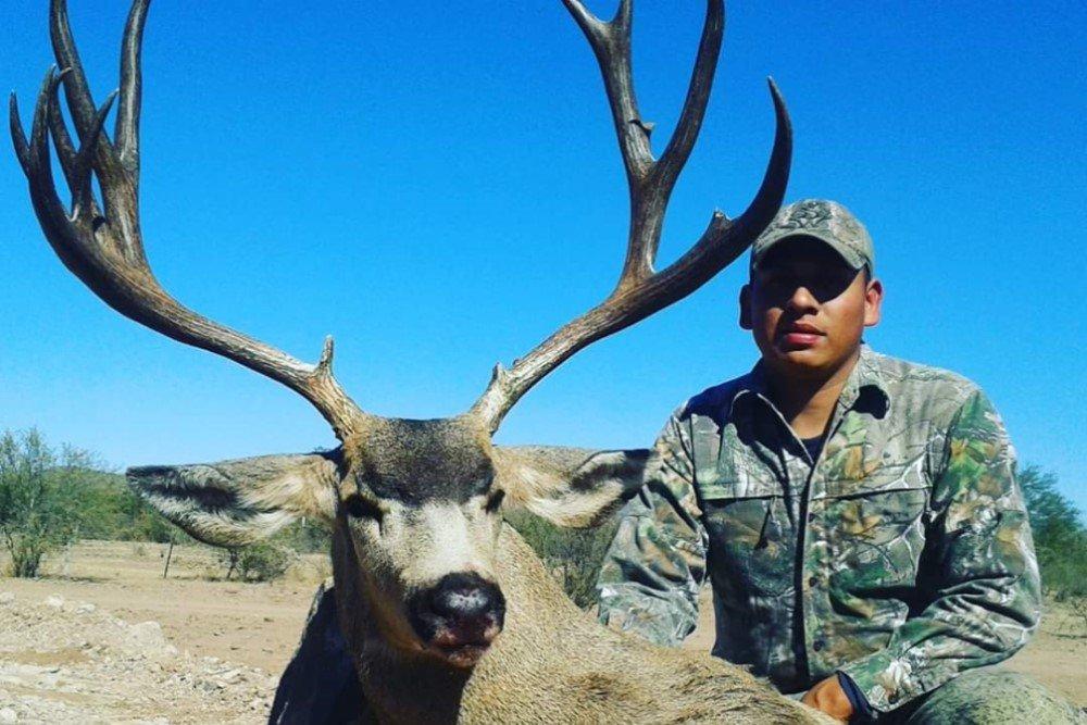 mule deer 2022