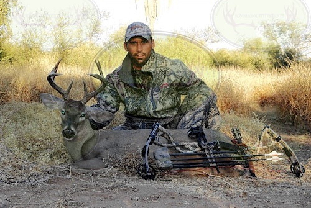 desert coues hunting