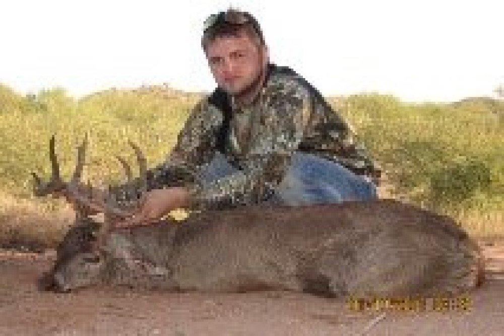 glenn coues deer hunt