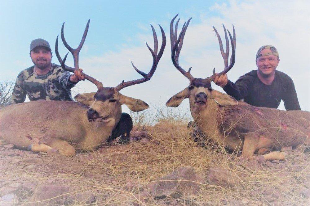 john matt mule deer hunt